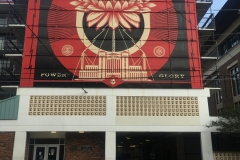 Shepard Fairey (of Charleston, S.C.)