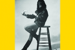 1987_GuerrillaGirls_ClocktowerPoster-ReviewTheWhitney